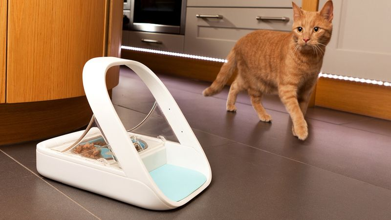 RFID-Enabled Pet Feeders