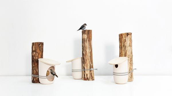 Tree-Tied Avian Abodes