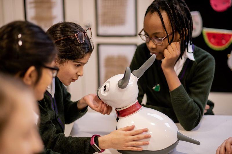 Interactive Animalistic Classroom Robots