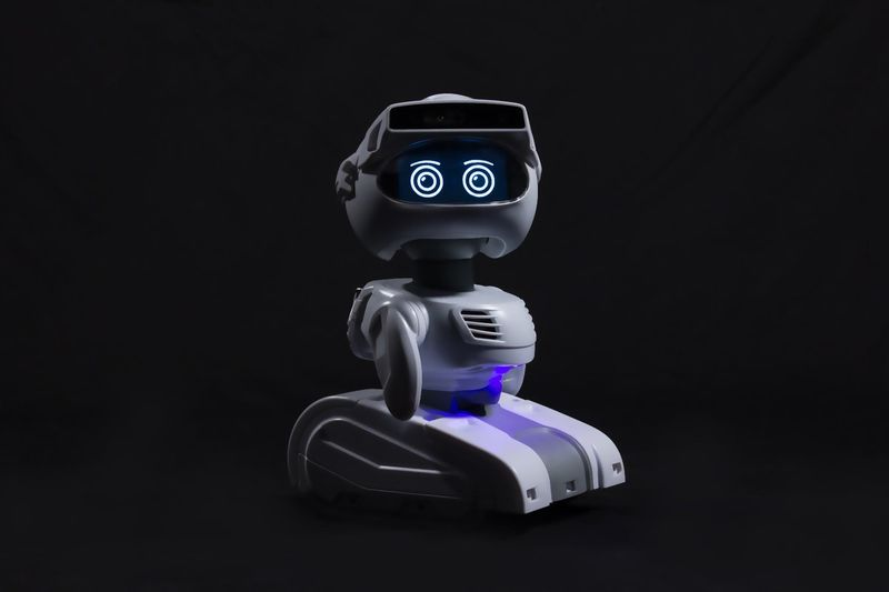 Affordable Home Robots