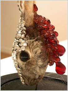 Mixed Media Taxidermy
