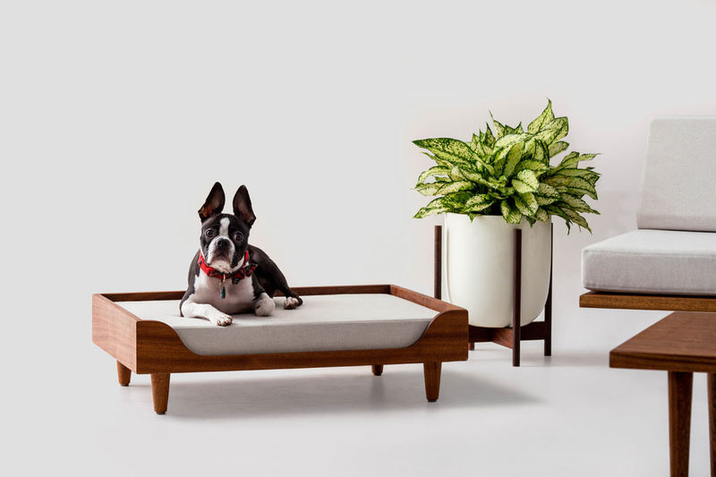 Ultra-Slick Modern Pet Beds