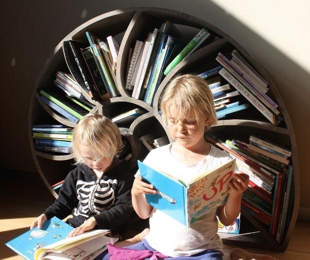 Handmade Nautilus Bookshelves