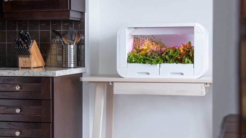 Automated Indoor Urbanite Gardens