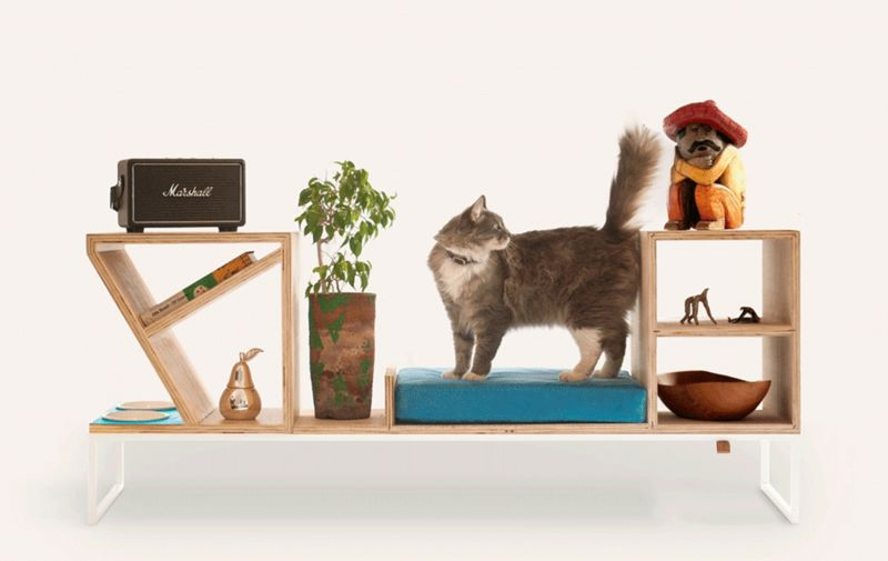 Pet-Friendly Family Furniture