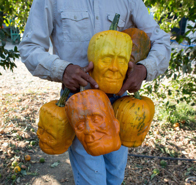 Monster-Shaped Pumpkins