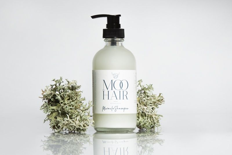 Icelandic Moss-Infused Hair Products