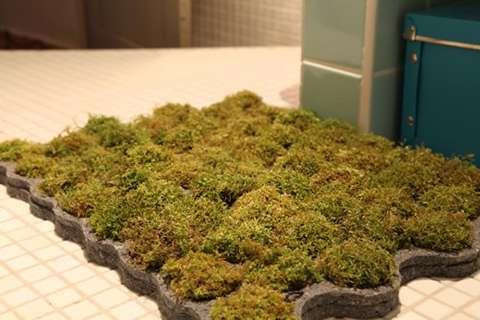 Grassy bath gardens moss bath rug for Moss shower mat