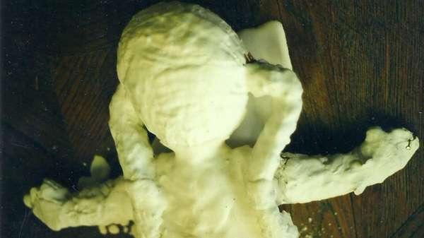 Petrified Plush Toy Pieces