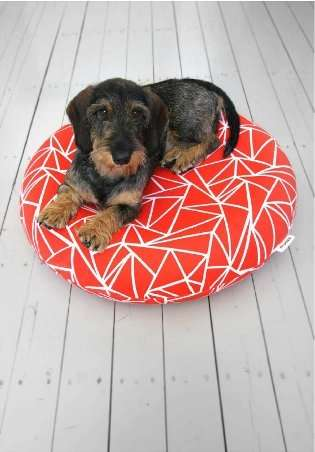 Dashing Dog Beds