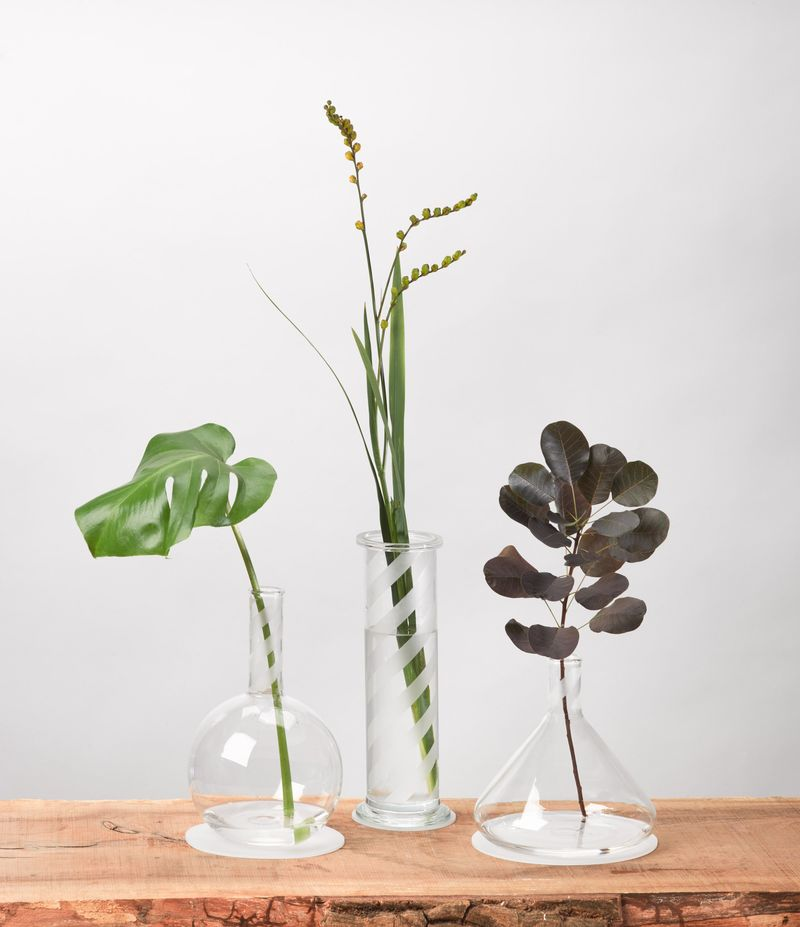 Scientific Glass Vases