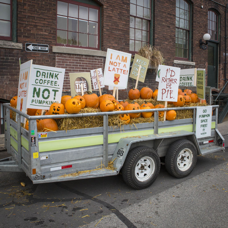 Pumpkin-Themed Coffee Protests