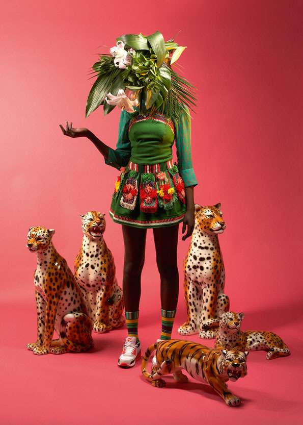 Vivid Tribal Pictorials