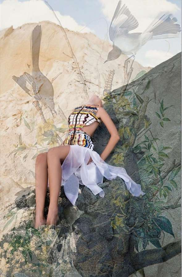 Exotic Bird-Inspired Dresses