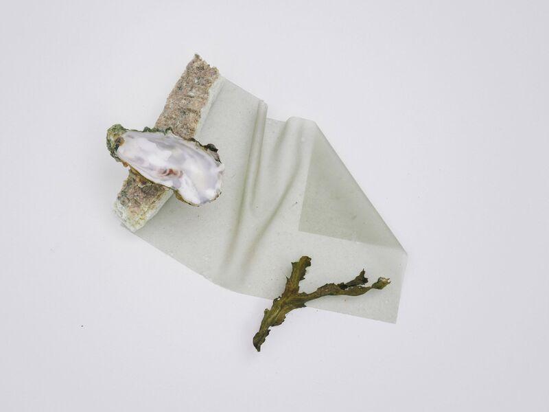 Seashell-Based Clay Ceramics