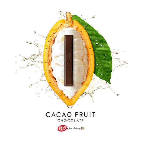 Naturally Sweetened Chocolate