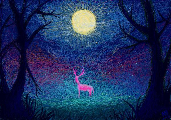 Enchanting Forest Illustrations