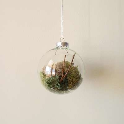 Ironic Nature Ornaments