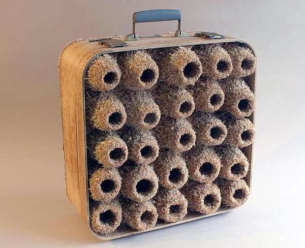 Vintage Suitcase Bird Nests