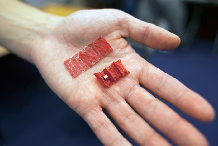 Battery-Removing Ingestible Robots