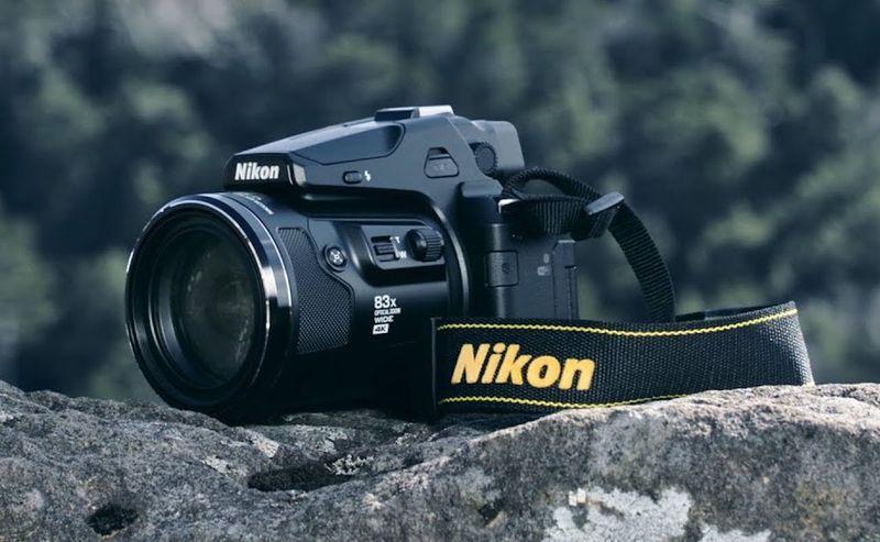 Wilderness Adventurer Cameras