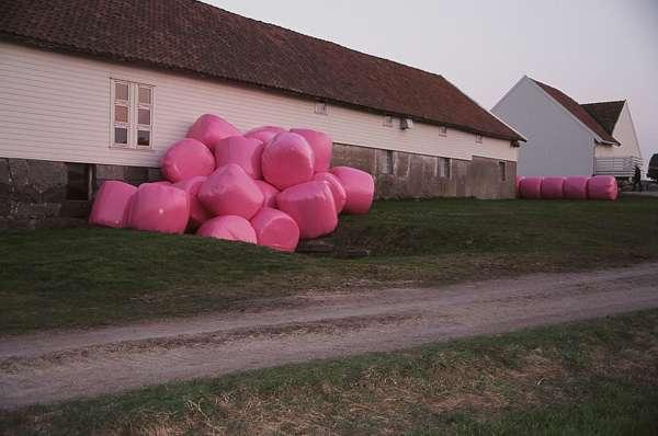 Pink Hay Bales