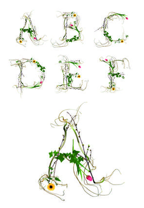 Botanical-Infused Typography