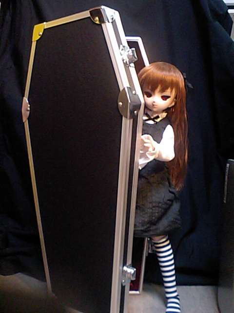Unusual Doll Cases