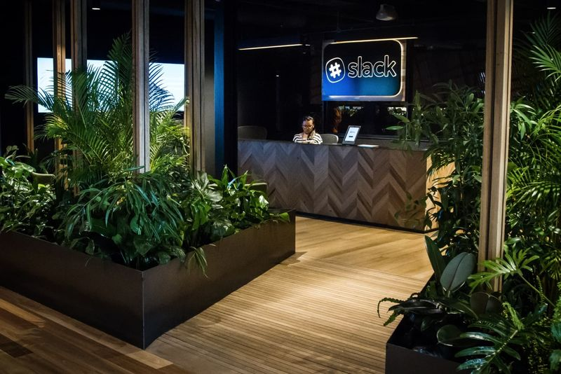 Brooding Forest Office Designs