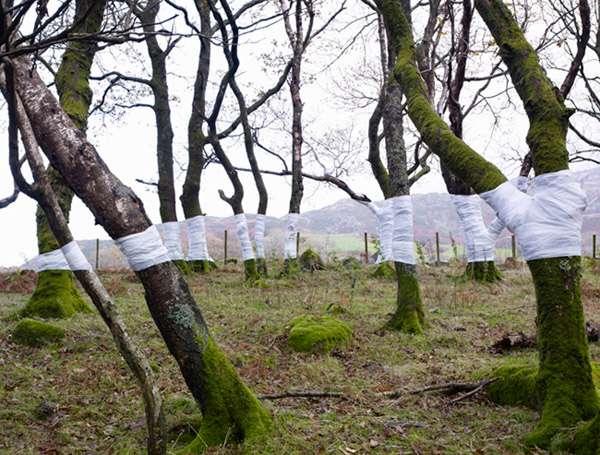 Bandaged Trunk Sculptures