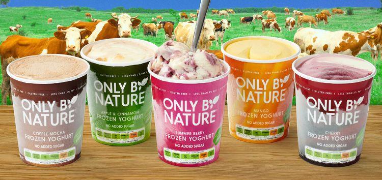 Free-From Frozen Yogurts