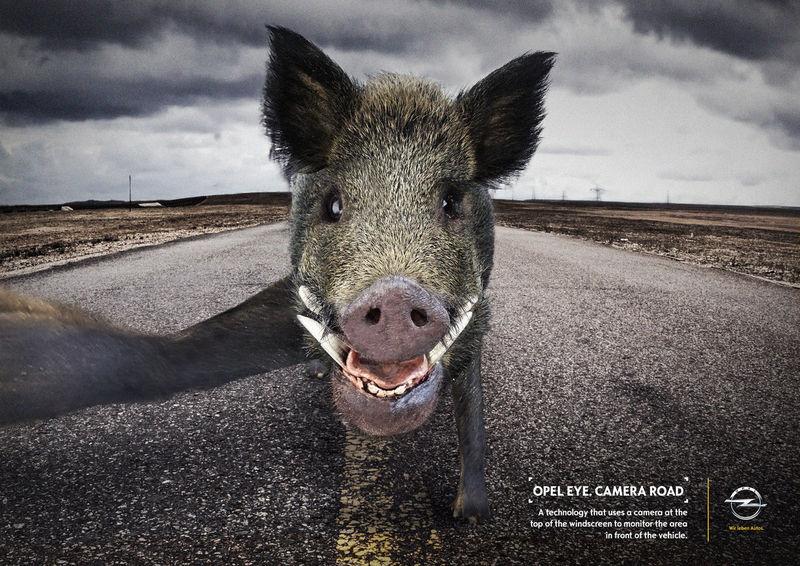 Animal Selfie Ads Quot Opel Eye Quot