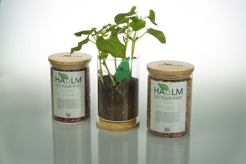 Dried Bean Plant Packaging