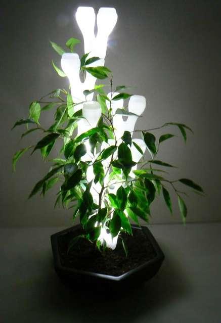 Plantable Lamps