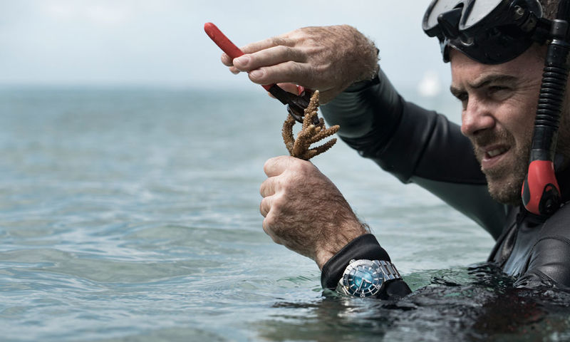 Reef Restoration-Supporting Watches
