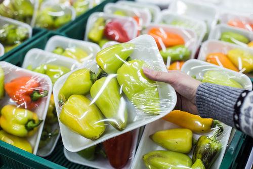Shellfish-Extracted Packaging Alternatives