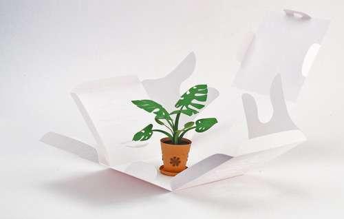 Papercraft Tropical Plants