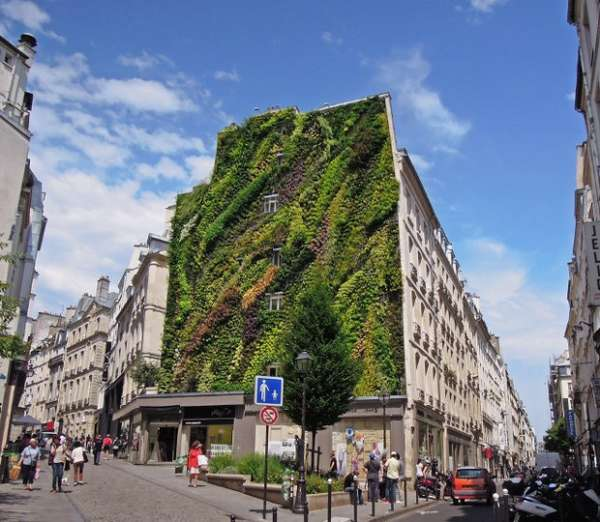 Sustainable Green-Wall Facades