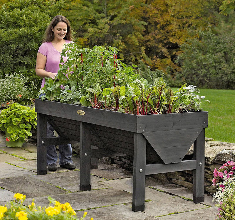 Elevated Urban Garden Boxes