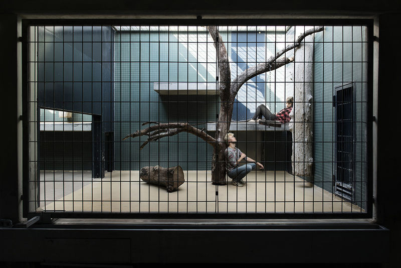 Caged Human Photography