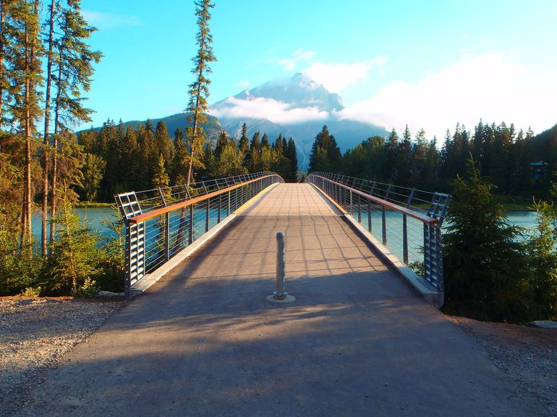 Custom-Built Pedestrian Bridges