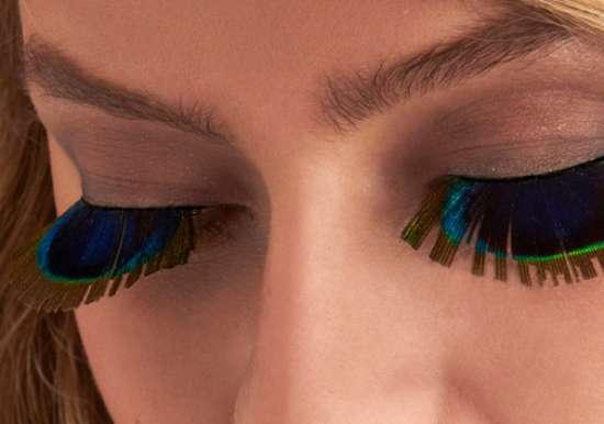 Avian Eyelashes