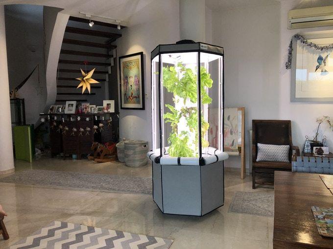 Vertical Indoor Gardening Systems