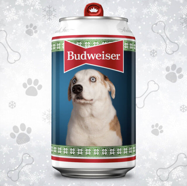 Personalized Pet Beer Cans