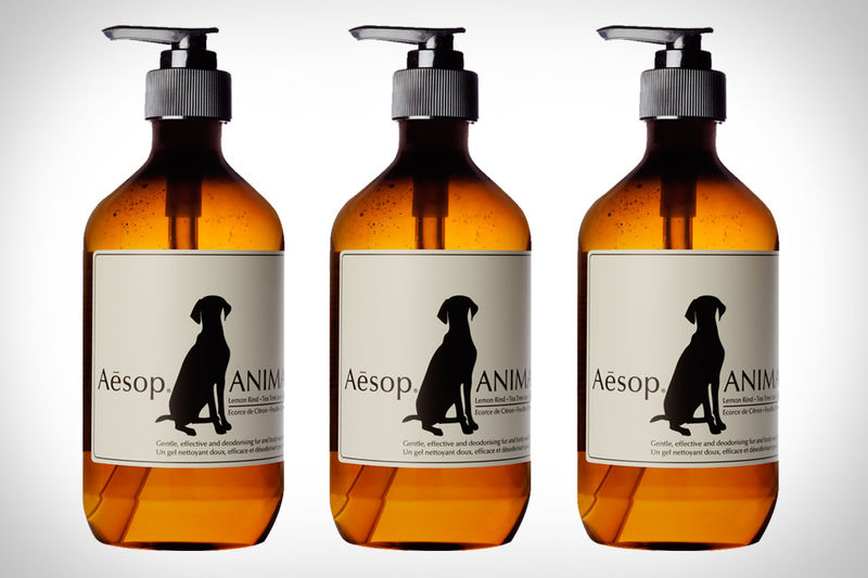 Pampering Pet Skincare