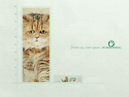 Sympathetic Cat Ads