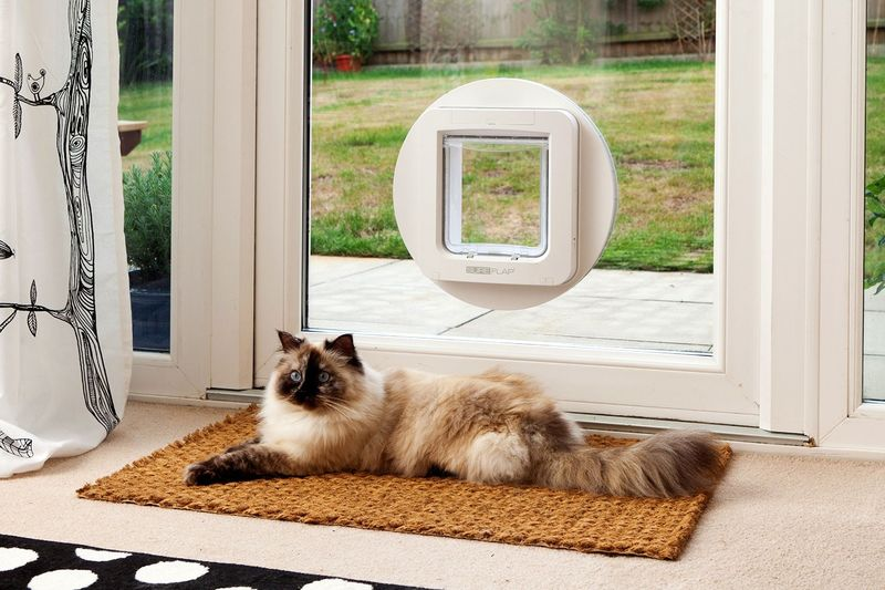 Microchip-Scanning Pet Doors