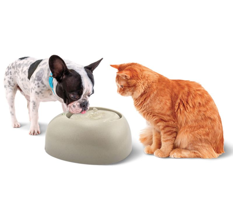 Oxygenating Pet Fountains
