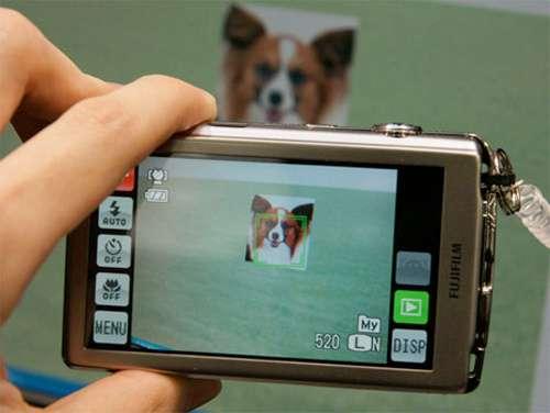 Pet Detection Cameras