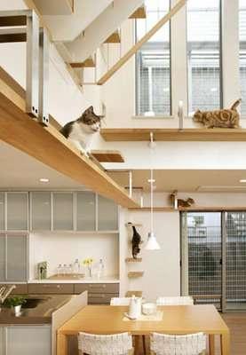 Pet-Friendly Architecture
